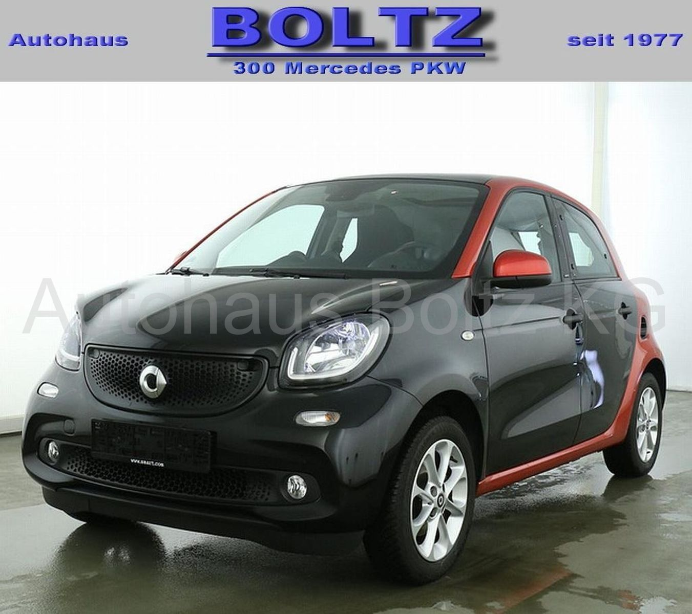 SMART forfour 66kW passion Panorama Komfort-P. LED