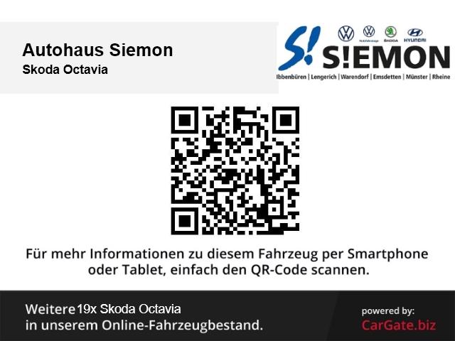 Skoda Octavia Combi Ambiente 1.9 TDI Klima Temp PDC CD