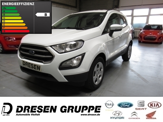 Ford EcoSport Cool&Connect PDC v+h+LED-Tagfahrlicht